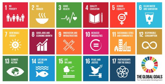 global-goals-full-icons.png__2318x1180_q85_crop_subsampling-2_upscale (1)