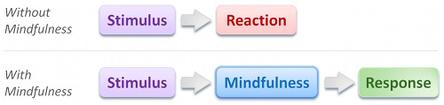 mindfulschools1