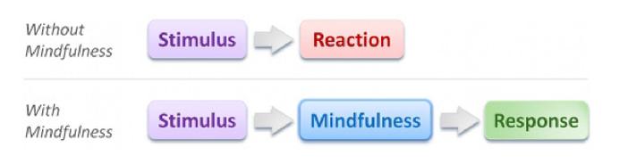 stimulus-response_1